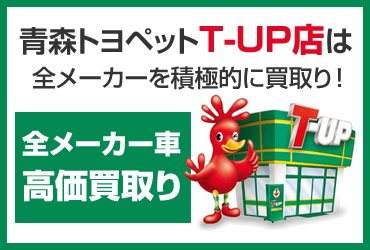 topbn_s_tup1
