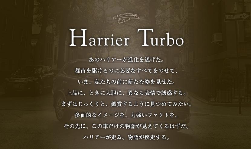 Harrier Toubo あのハリアーが進化を遂げた。都市をかけるのに必要なすべてをのせて、いま、私たちの前に新たな姿を見せた。上品に、ときに大胆に、異なる表情で誘惑する。まずはじっくりと、鑑賞するように見つめてみたい。多面的なイメージを、力強いファクトを。その先に、この車だけの物語が見えてくるはずだ。ハリアーが走る。物語が疾走する。
