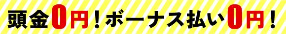 頭金0円!ボーナス払い0円!