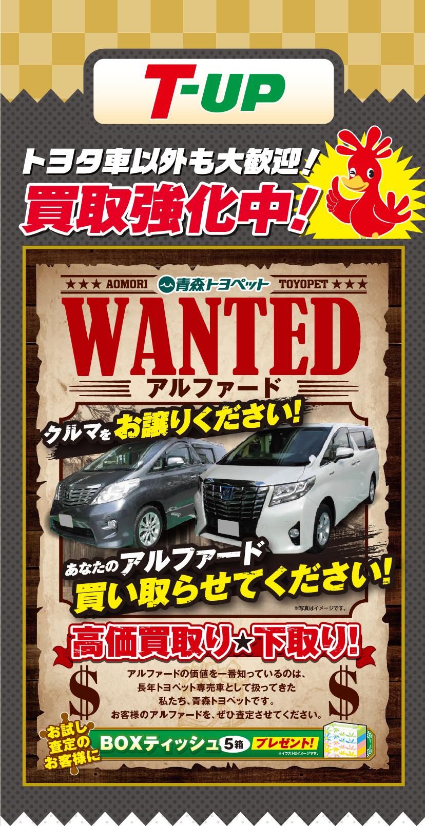 T-UP、トヨタ車以外も大歓迎!買取強化中!WANTED アルファード:クルマをお譲りください!あなたのアルファード買い取らせてください!高価買取り★下取り!アルファードの価値を一番知っているのは、長年トヨペット専売車として扱ってきた私たち、青森トヨペットです。お客様のアルファードを、ぜひ査定させてください。お試し査定のお客様にBOXティッシュ(5箱)プレゼント!